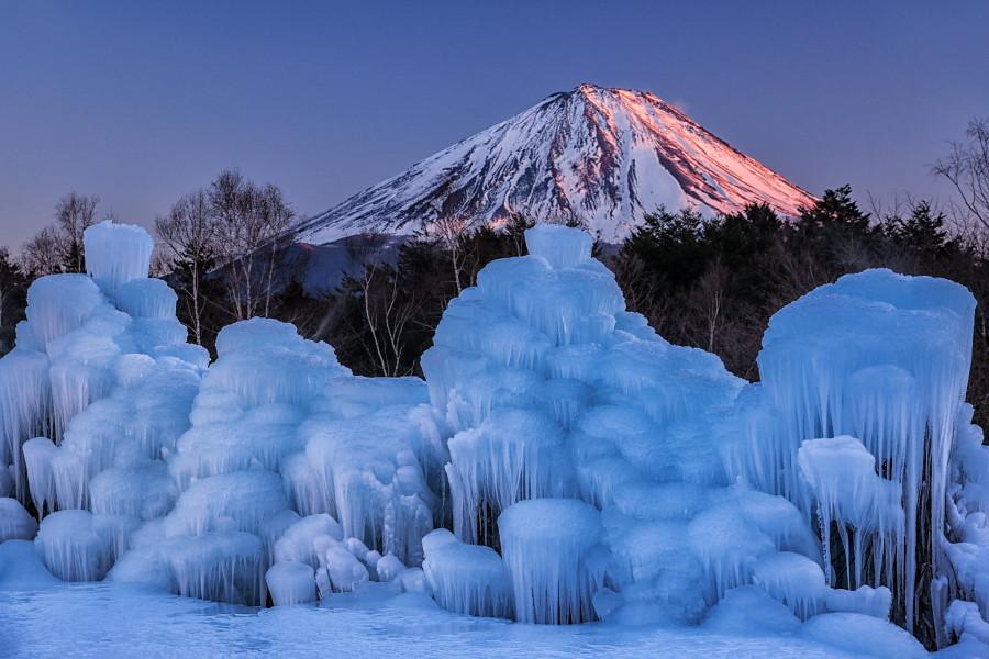 夕方の紅富士と樹氷