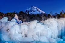 夕暮れの樹氷と富士山