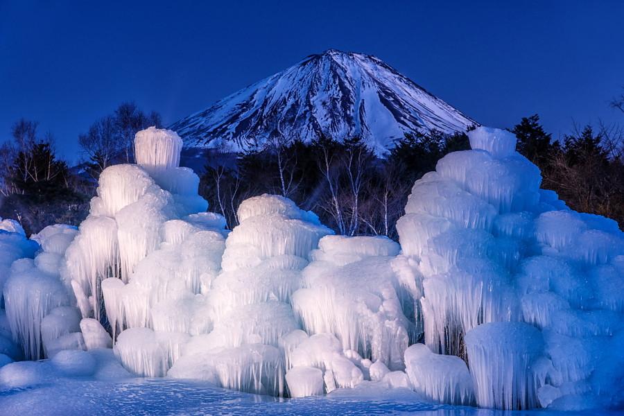 ライトアップされた樹氷と富士山