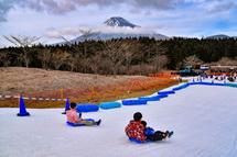 富士山をバックにそり滑りを楽しむ