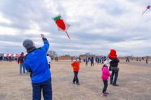 凧揚げを楽しむ
