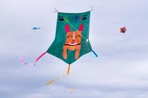 空を泳ぐ凧