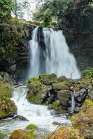 園内にある「不動の滝」