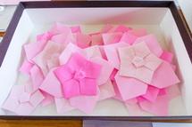ワークショップで使った紙素材