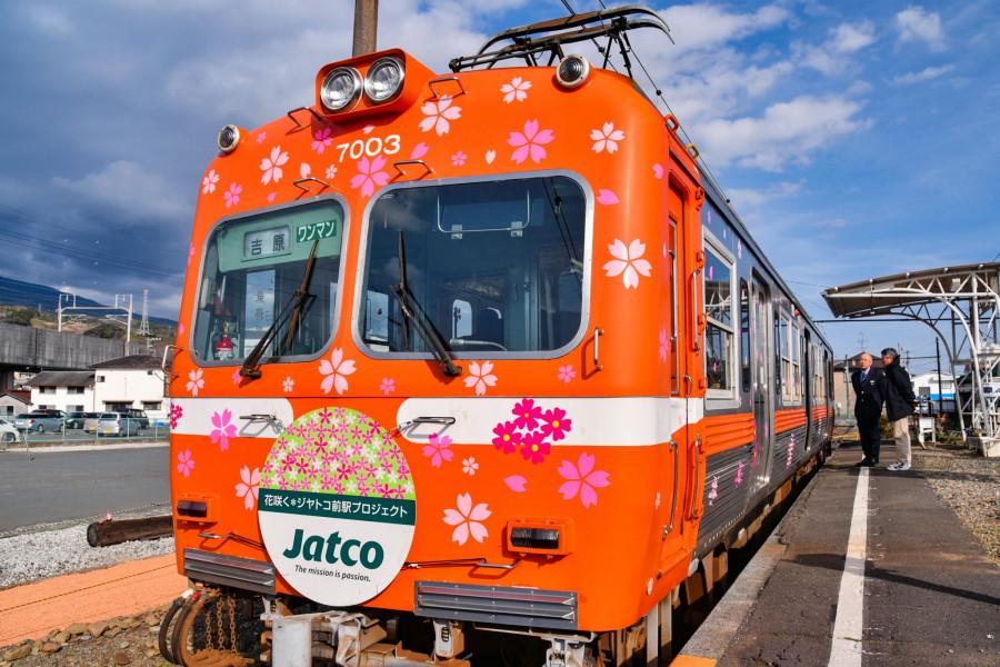 桜がラッピングされた電車