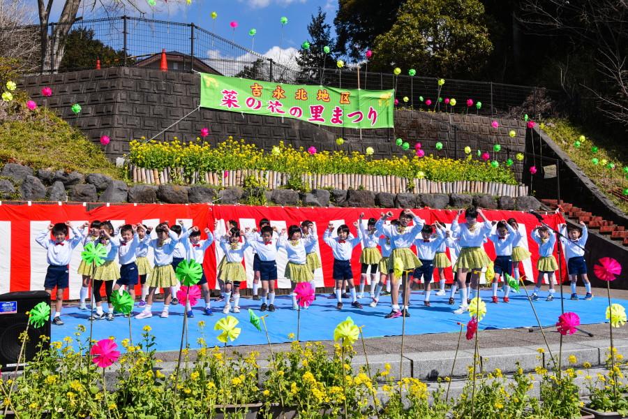 菜の花の里まつり開催の鵜無ヶ淵公園