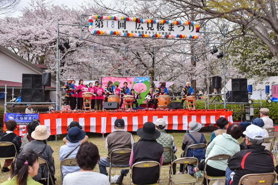 広見桜まつり開催の広見公園
