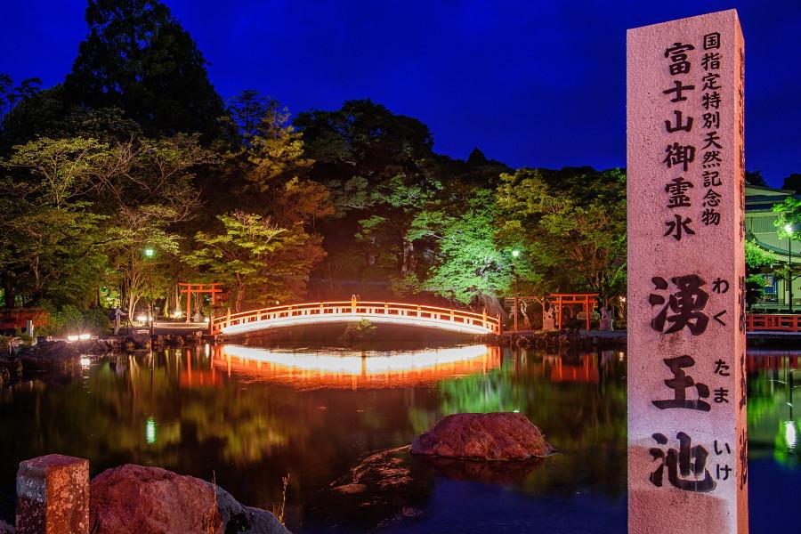湧玉池のライトアップ風景