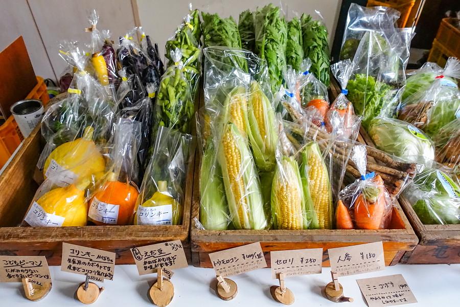多彩な有機野菜を販売