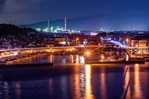 展望台からの田子の浦漁港方面の夜景