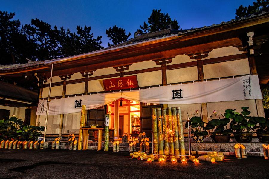 本堂と竹灯籠の風景