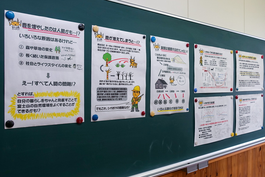 富士山麓の鹿についての解説