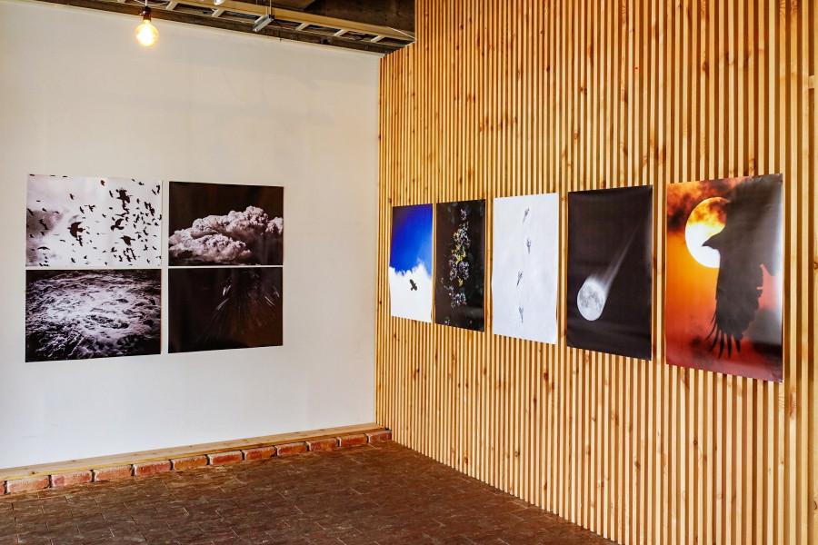 吉田多麻希写真展開催のAlternative Space ARATA