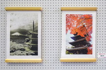 富士宮市役所1階市民ホールの写真展示