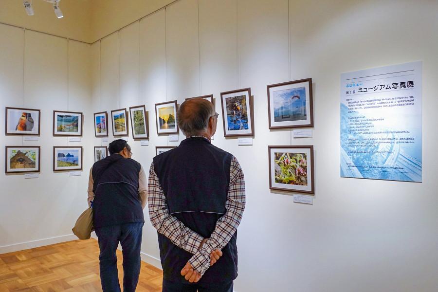 写真展開催のふじのくに地球環境史ミュージアム
