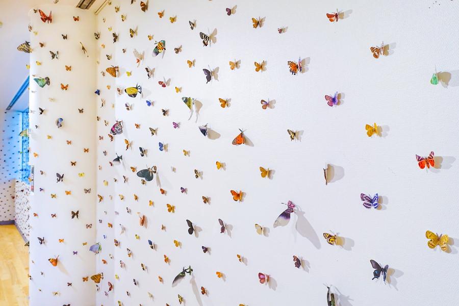 図鑑から切り抜いた無数の蝶が貼り付けられたミュージアムの壁