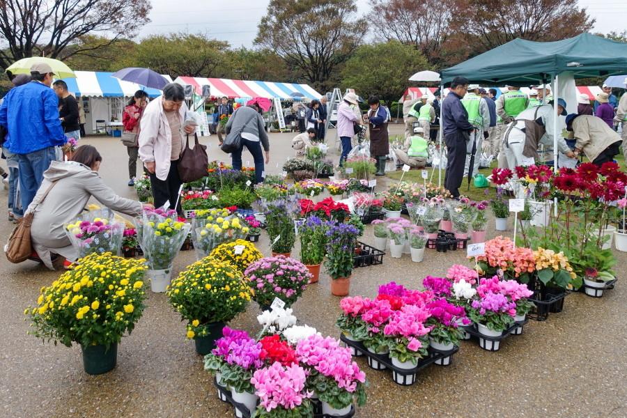 緑と花の百科展開催の富士市中央公園
