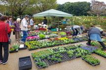 植物・園芸用品の販売コーナー