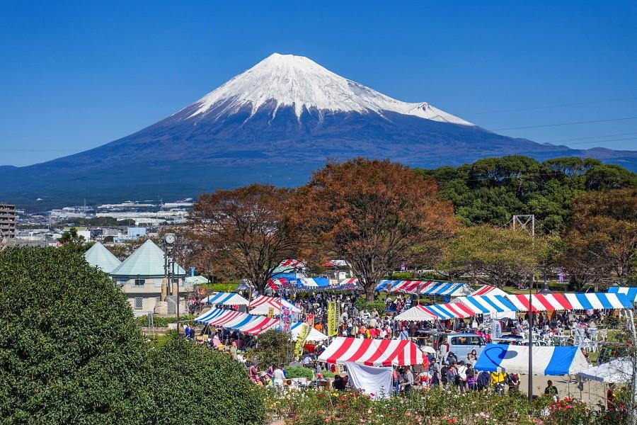 会場からの美しい富士山